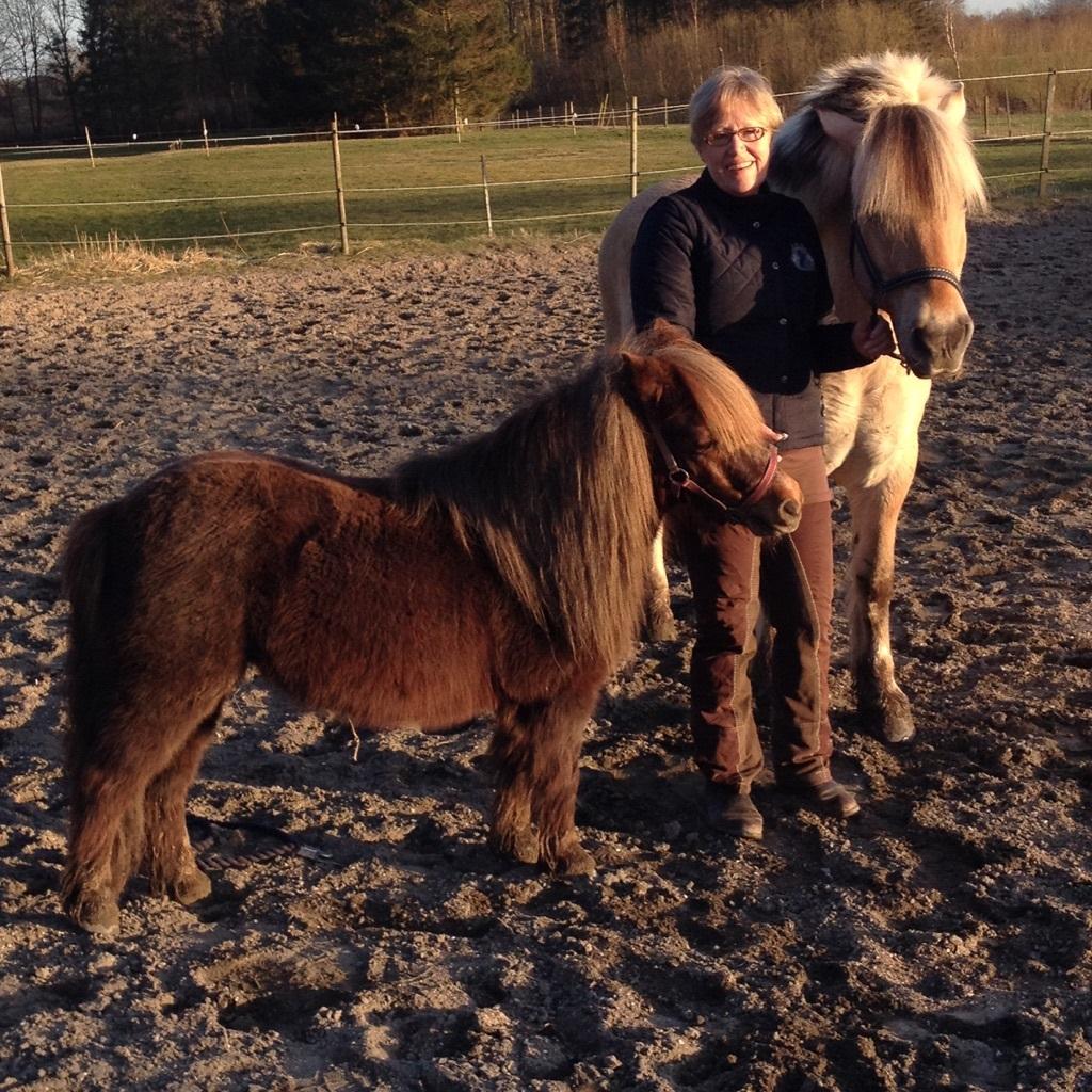 Karin står med to heste