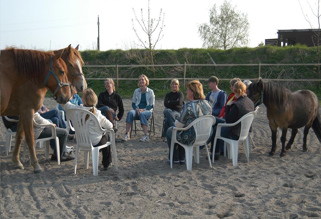 Gruppe billede af deltagere til coaching med heste